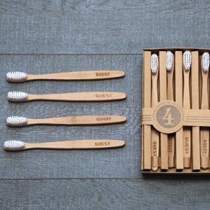 'Guest' Year's Supply Toothbrushes Set Of Four