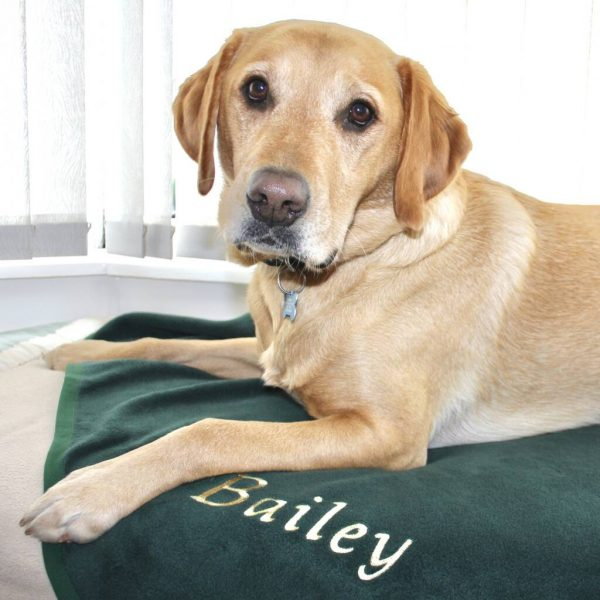 Personalised Embroidered Pet Blanket, Claret/Chocolate/Brown