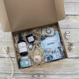 'The Health And Wellness Box' Dog Gift Set