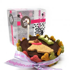 'Give The Dog A Bone' Cake For Dogs